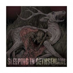 SLEEPING IN GETHSEMANE - Burrows LP