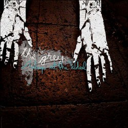 THE GREY - Asleep At The Wheel LP