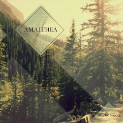 AMALTHEA - In The Woods CD
