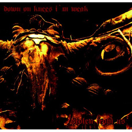 DOWN ON KNEES I M WEAK - Stolen from us  LP