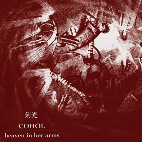 HEAVEN IN HER ARMS / COHOL - Split 12""