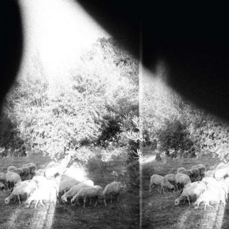 GODSPEED YOU! BLACK EMPEROR - Asunder, Sweet And Other Distres LP