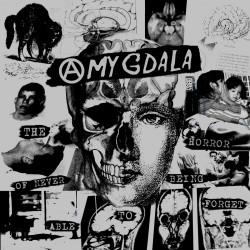 AMYGDALA - St 7''