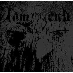 I AM MY END - I Am My End LP