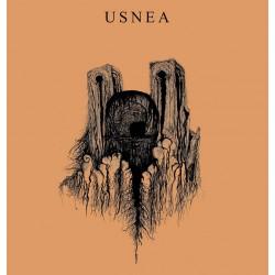 USNEA / RUINS - Split 7''