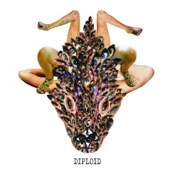 DIPLOID - Is God Up There LP