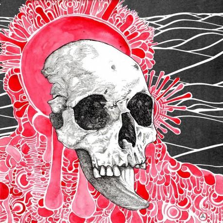 MICHEL ANOIA - Plethora LP