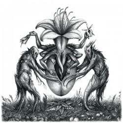 BOTANIST - IV: Mandragora LP