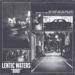 LENTIC WATERS - Bird LP