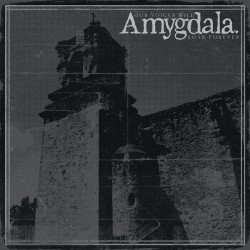 AMYGDALA - Our Voice Will Soar Forever LP