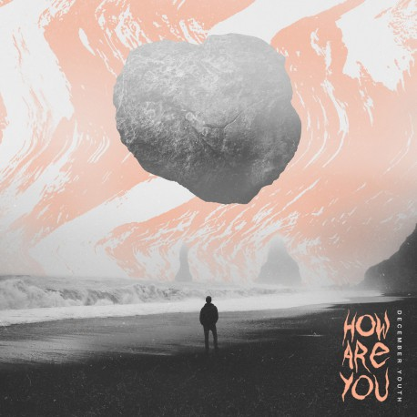 DECEMBER YOUTH - How Are You LP